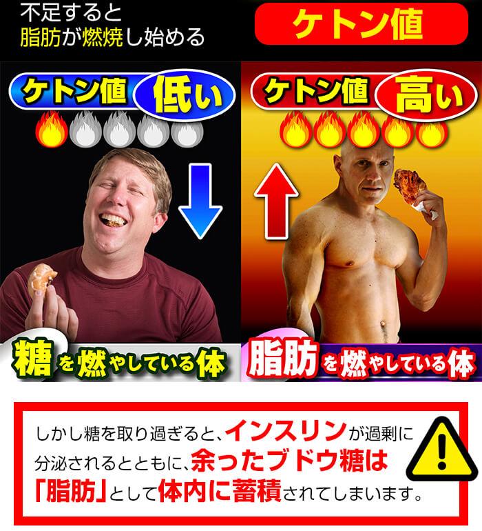 糖の燃焼か脂肪の燃焼か
